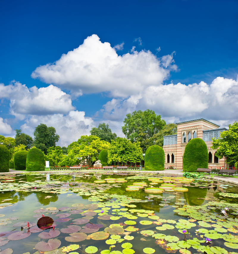Formal garden. beautiful pond in public park. royalty free stock photos