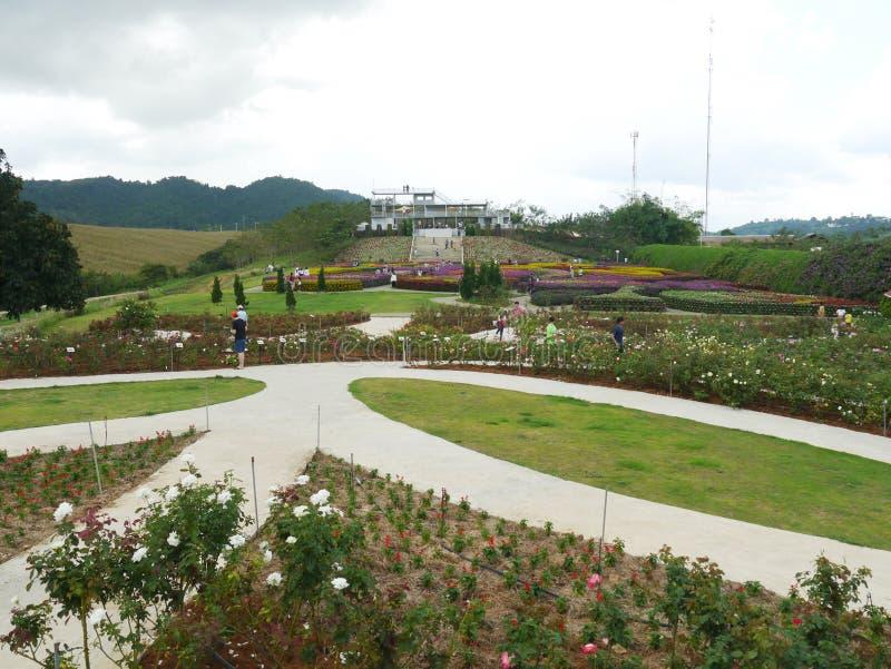 Formal Garden. Park- Man Made Space, Formal Garden royalty free stock images