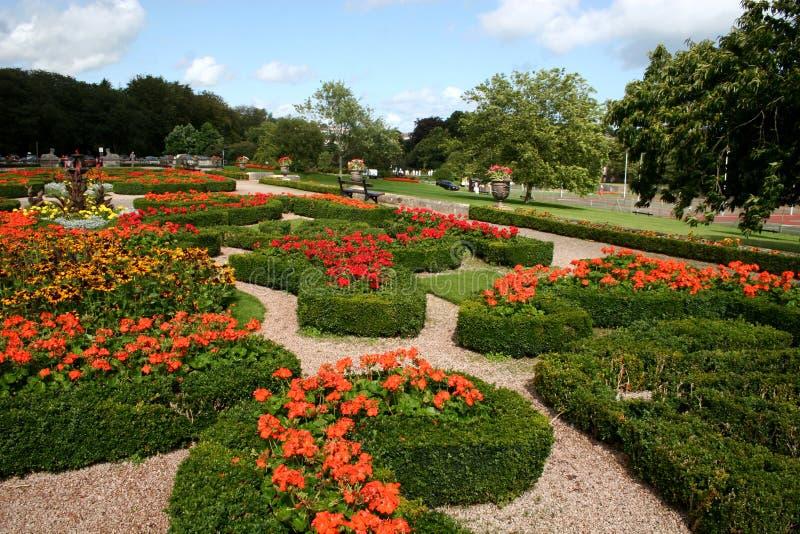 Download Formal gardens stock image. Image of arrangement, display - 7513989