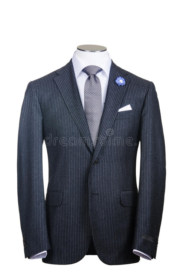 Download Formal suit stock image. Image of jacket, professional - 29369287