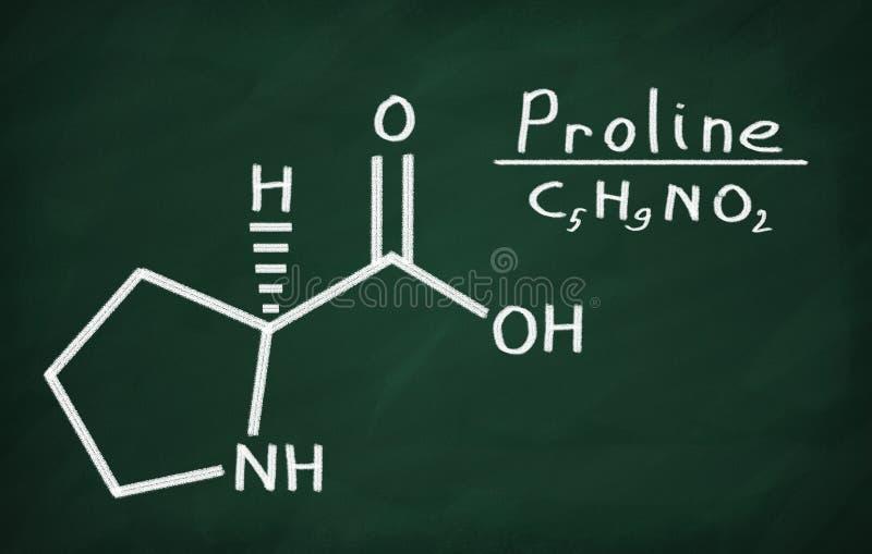 Formalnie model Proline ilustracji