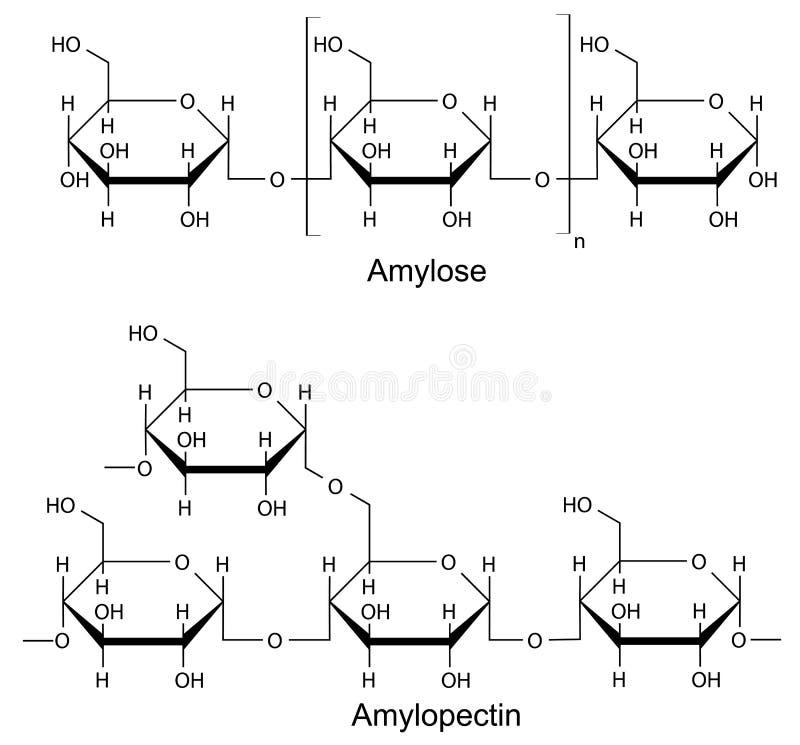 Formalnie składniki krochmal. Chemiczna formuła royalty ilustracja