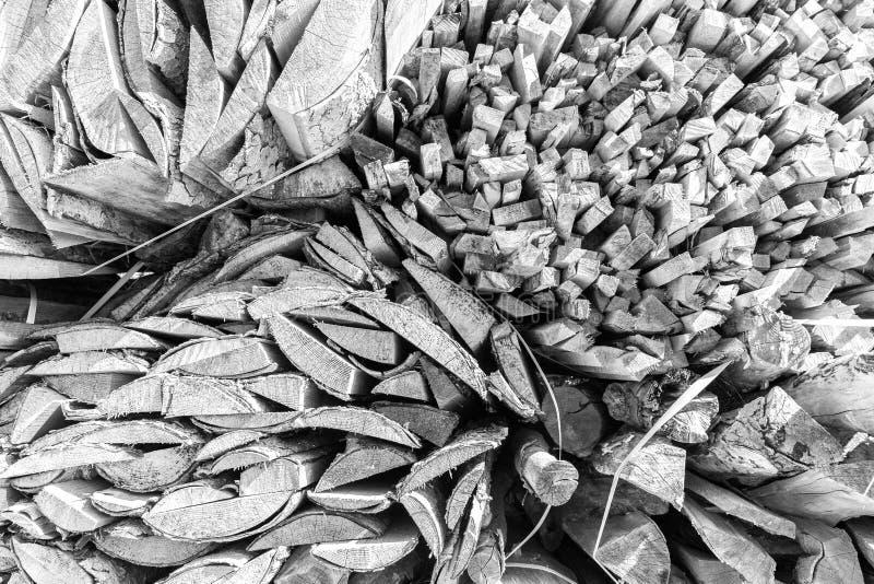 Formas da textura dos firewoods dos logs das madeiras foto de stock royalty free