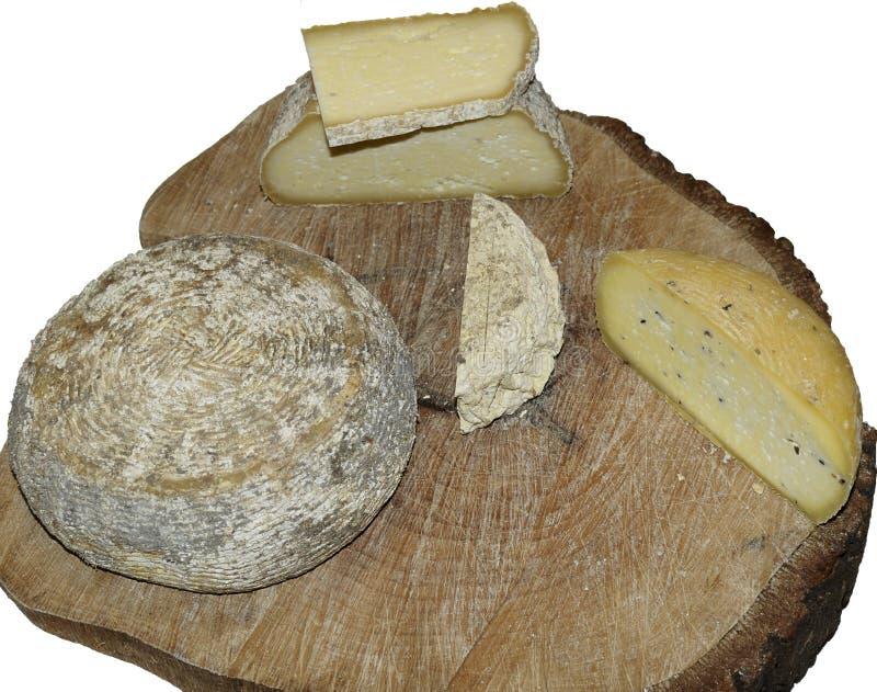 Formas de queso del pecorino del artesano fotografía de archivo libre de regalías