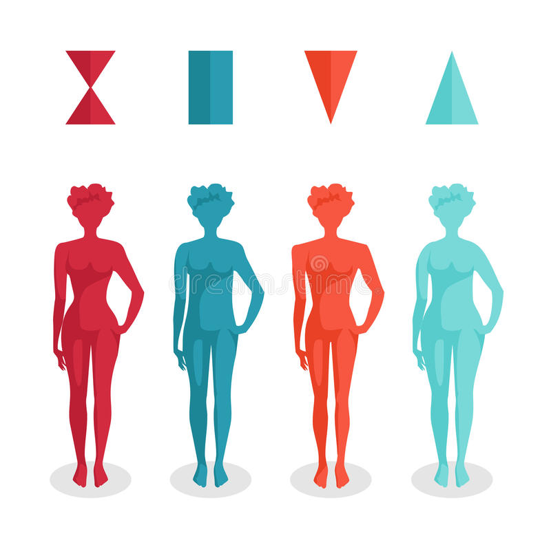 Formas do corpo fêmea ilustração stock