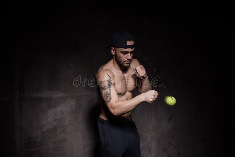 Formation d'homme de boxeur avec la boule de combat images stock