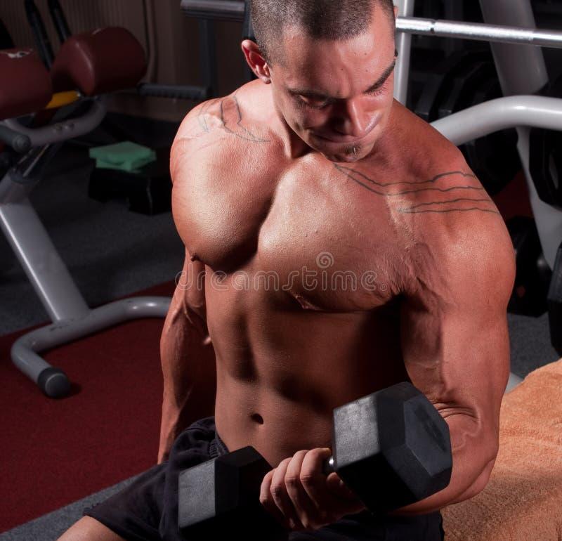 Formation de Bodybuilder photographie stock