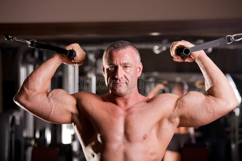 Formation de Bodybuilder images stock