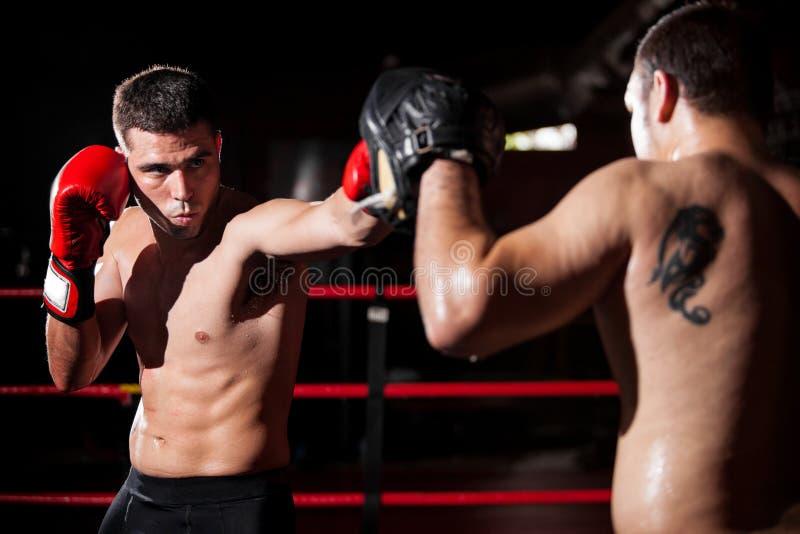 Formation de boxeur et d'entraîneur dans un anneau image stock