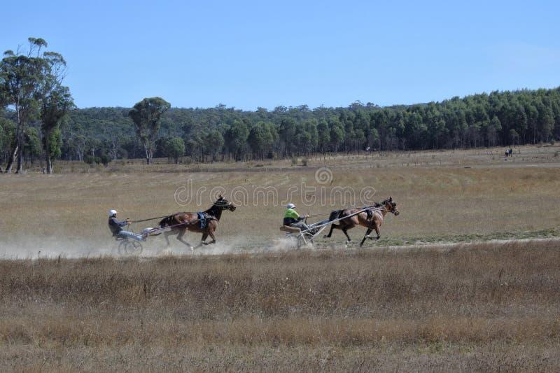 Formation de course d'attelages en Tasmanie Australie photographie stock libre de droits