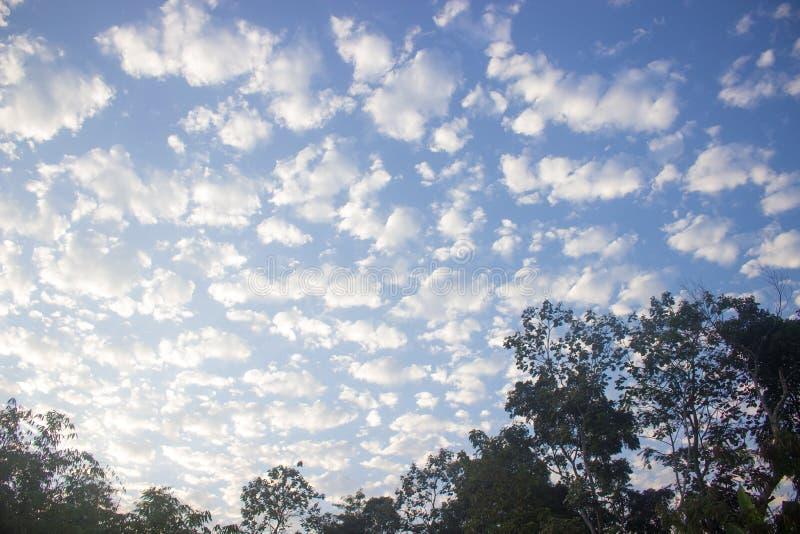 Formation de nuage dans le ciel bleu et les arbres images stock