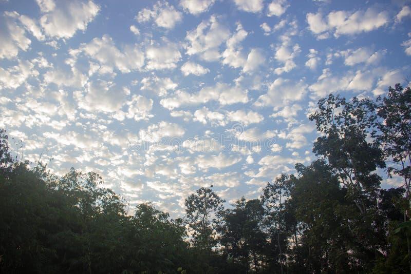 Formation de nuage dans le ciel bleu et les arbres photo libre de droits