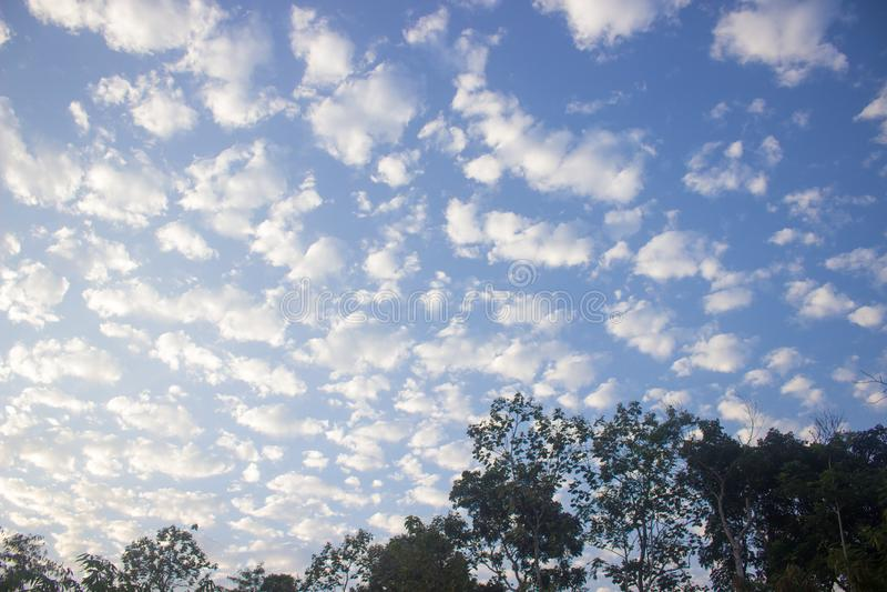 Formation de nuage dans le ciel bleu et les arbres image libre de droits