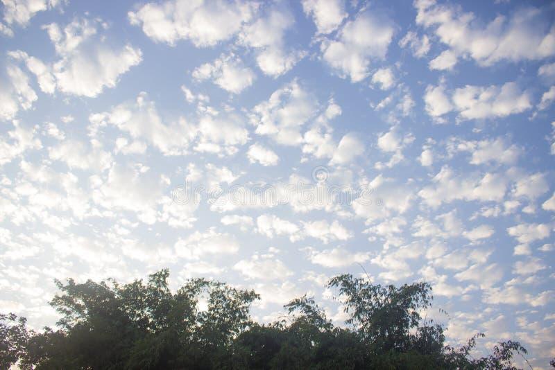 Formation de nuage dans le ciel bleu et les arbres image stock