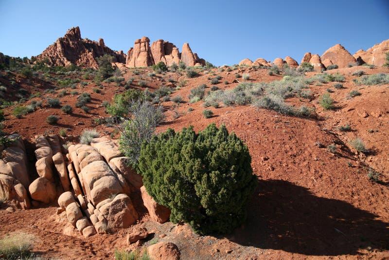 Formation de roche dans les voûtes parc national, Utah, Etats-Unis photographie stock libre de droits