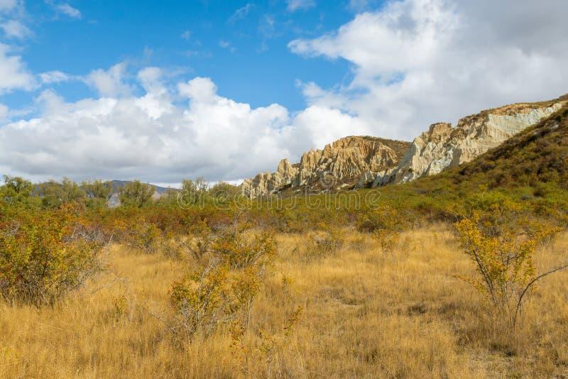 Formation de roche de gr?s pr?s d'Omarama au Nouvelle-Z?lande photo stock