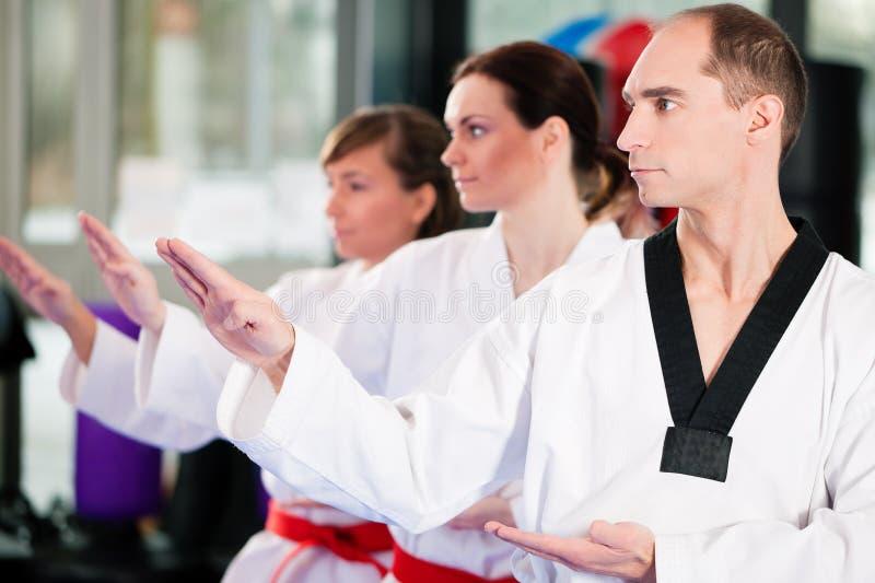 Formation de sport d'arts martiaux en gymnastique photos libres de droits