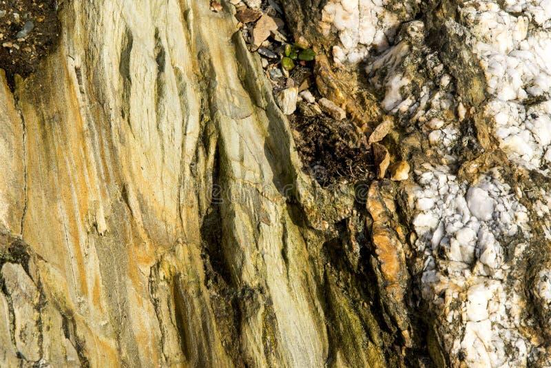Formation géologique - roches - île sainte R-U, Pays de Galles photo libre de droits