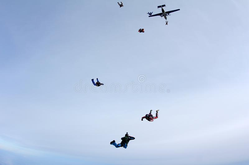 Formation skydiving. A group of skydivers is jumping out of a plane. stock photography