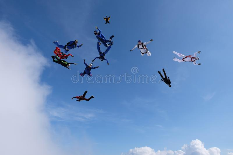 Formation skydiving in the sunset sky. Skydiving. A group of skydivers is falling in the sky stock photo