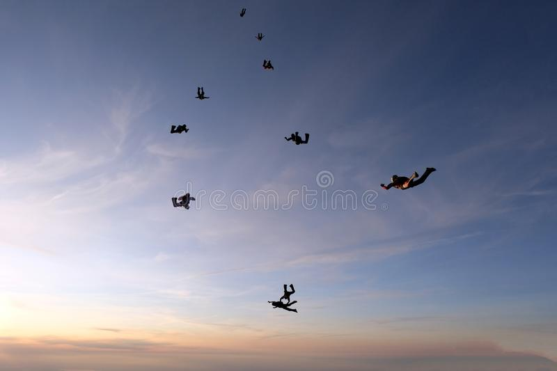 Formation skydiving in the sunset sky. Skydiving. A group of skydivers is falling in the sky stock image