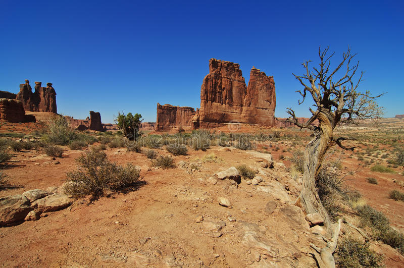 Formations at arches national park, utah, royalty free stock photography