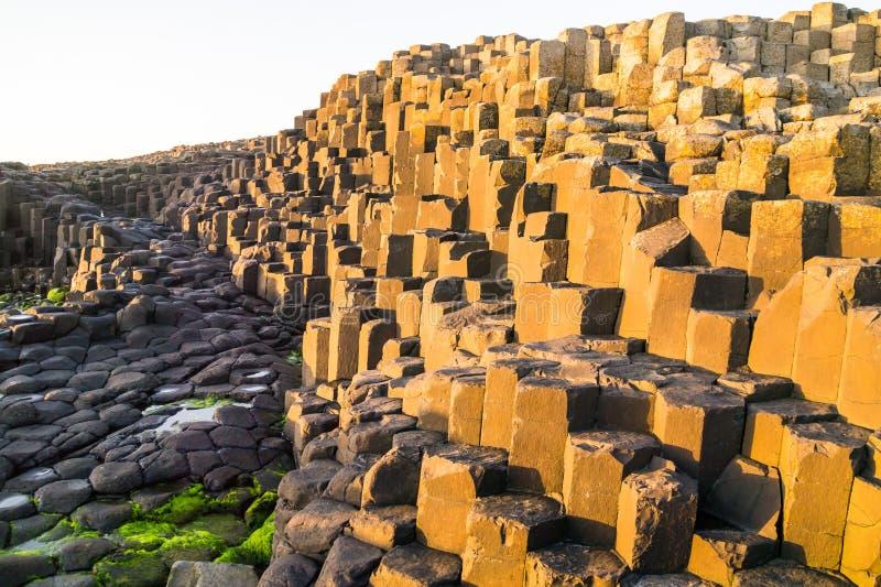 Formations de basalte éclairées sur la Chaussée des Géants en Irlande du Nord image libre de droits