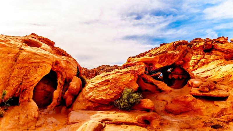 Formations de roche aztèques rouges de grès dans la vallée du parc d'état du feu, Nevada, Etats-Unis photos libres de droits