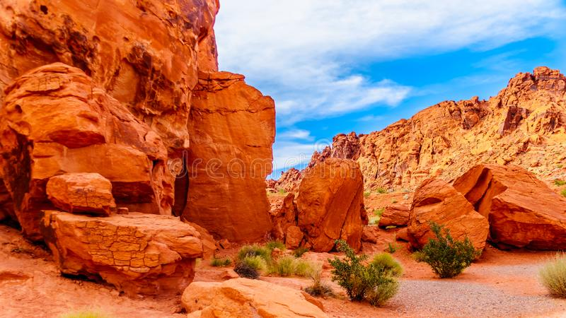 Formations de roche aztèques rouges de grès dans la vallée du parc d'état du feu, Nevada, Etats-Unis image stock
