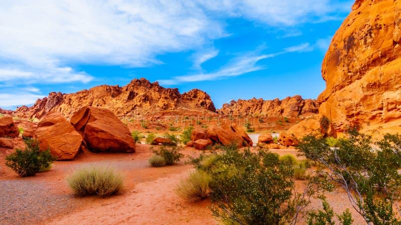 Formations de roche aztèques rouges de grès dans la vallée du parc d'état du feu, Nevada, Etats-Unis photo libre de droits