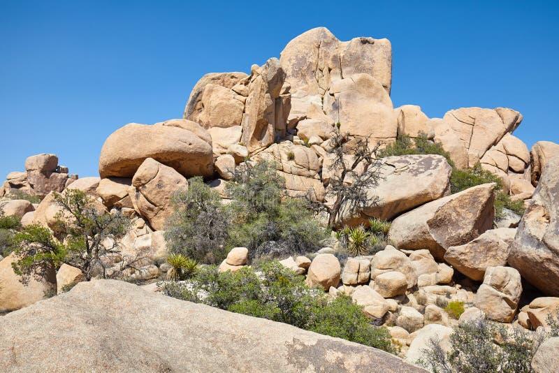 Formations de roche dans Joshua Tree National Park, Etats-Unis photos libres de droits