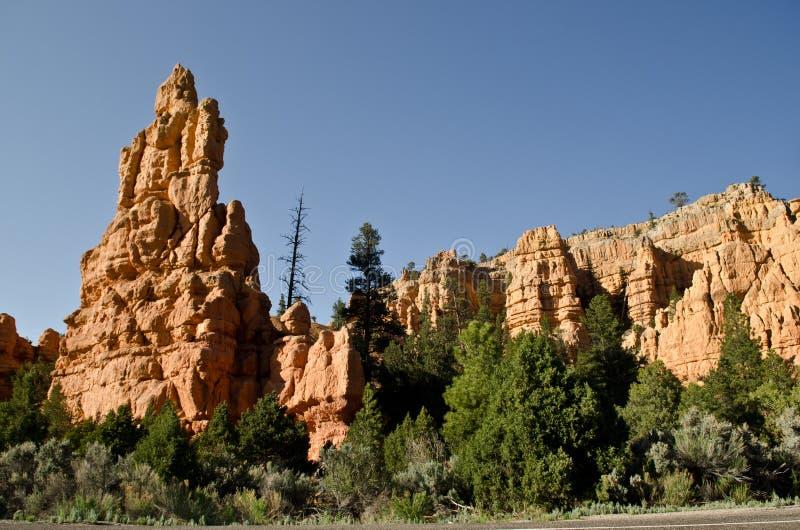 Formations de roche dans la forêt nationale de Dixie photographie stock