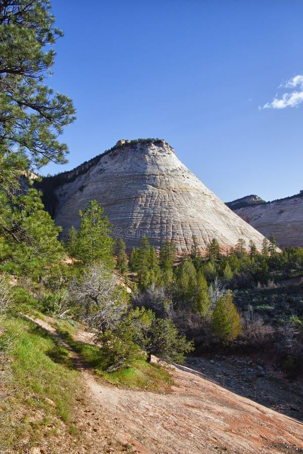 Formations de roche dans la gorge de Zion photographie stock libre de droits