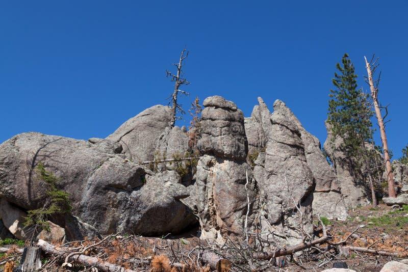 Formations de roche en Custer State Park photo libre de droits