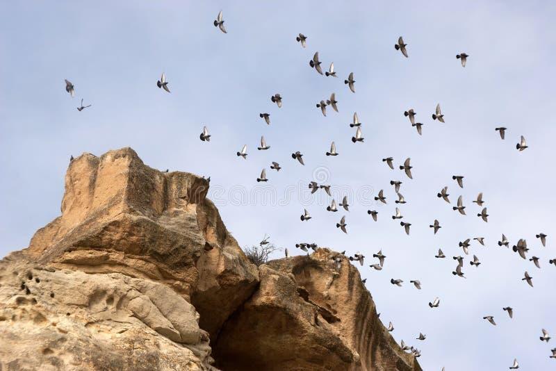 Formations de roche en parc national de Goreme image libre de droits