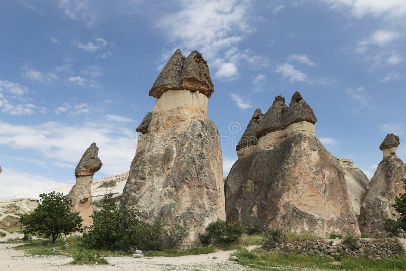 Formations de roche en vallée de moines de Pasabag, Cappadocia images libres de droits