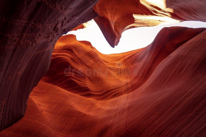 Formations incurv?es de gr?s au canyon d'antilope image stock