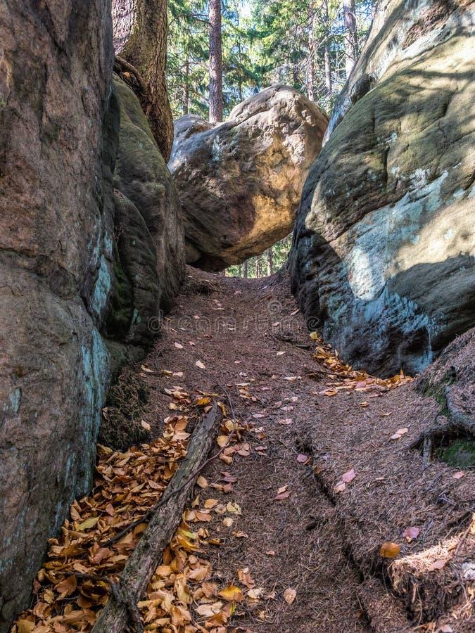 Formazione di roccia di arenaria e di arbusti nel parco nazionale di Table Mountain, Polonia fotografia stock libera da diritti