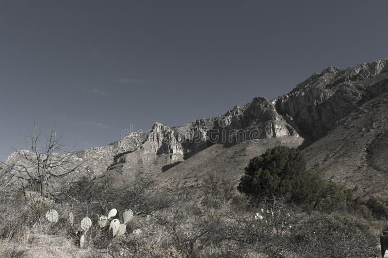 Formazione massiccia del calcare di EL Capitan fotografie stock libere da diritti