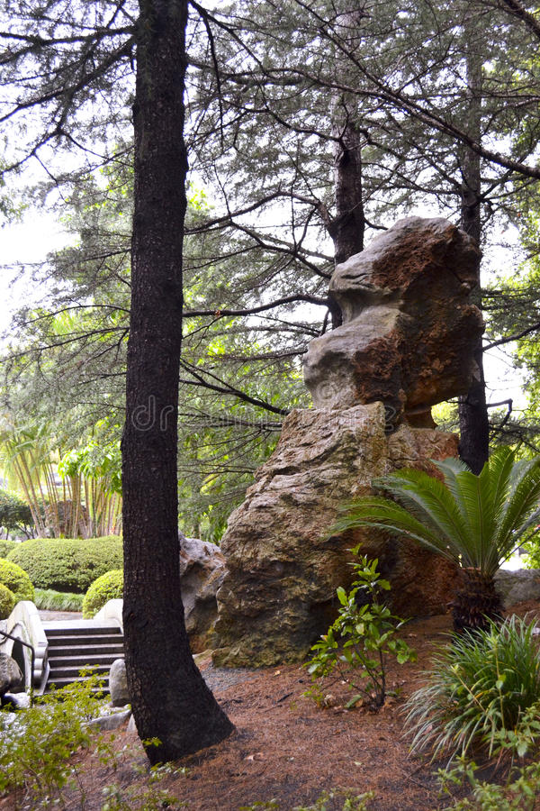 Formazione rocciosa, giardino cinese di amicizia, Darling Harbour, Sydney, Nuovo Galles del Sud, Australia immagini stock libere da diritti