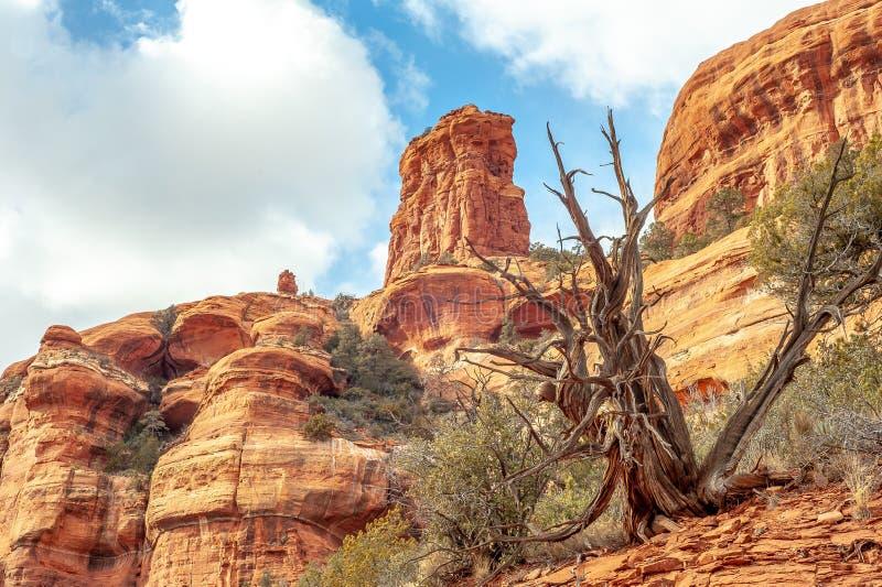 Formazione rocciosa rossa in Sedona, Arizona fotografia stock libera da diritti