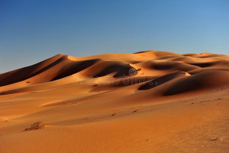 Formazioni della duna in Al Khali dello sfregamento fotografia stock libera da diritti