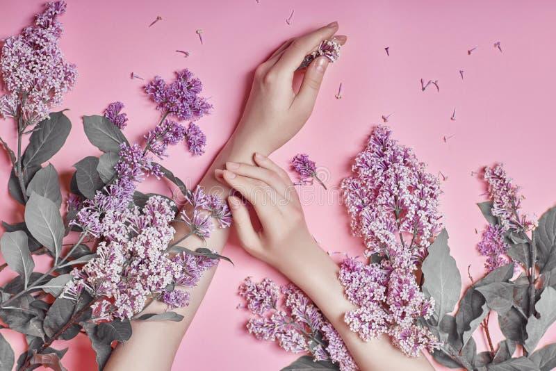 Forme às mãos da arte as mulheres naturais dos cosméticos, flores lilás roxas brilhantes à disposição com composição brilhante do fotografia de stock