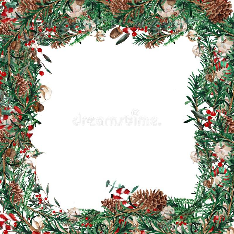Forme carrée de cadre de Noël d'aquarelle Calibre des branches de sapin, buis, baies rouges sur un fond blanc illustration libre de droits