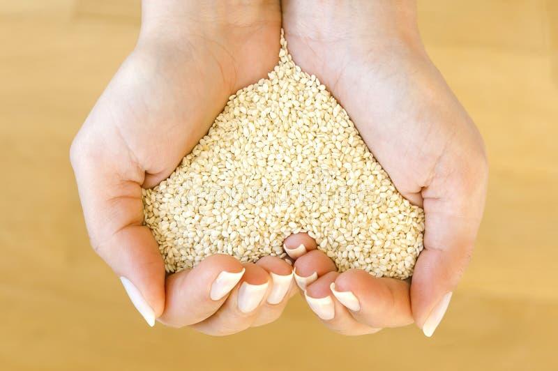 Forme de coeur des graines de sésame images libres de droits