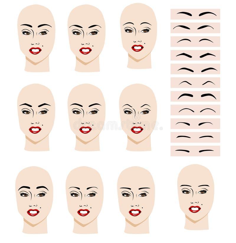Fabuleux Forme de sourcil illustration de vecteur. Image du facial - 33184595 SG33