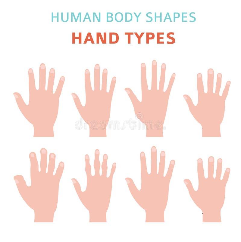 Forme del corpo umano Tipi insieme della mano dell'icona illustrazione vettoriale