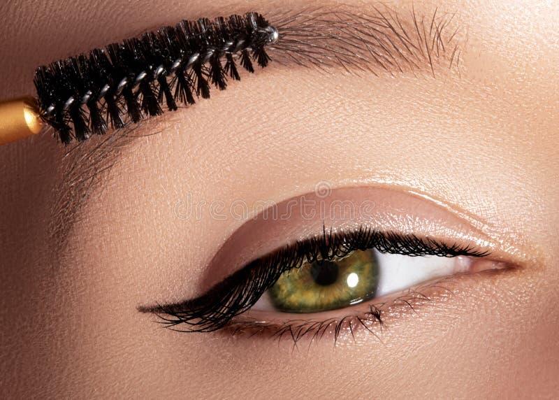 Forme a la mujer que aplica el sombreador de ojos, el rimel en el párpado, la pestaña y la ceja usando cepillo del maquillaje Art imagen de archivo libre de regalías