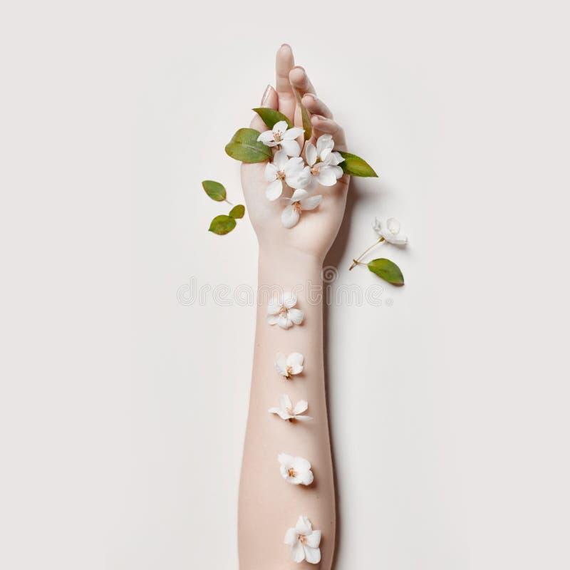 Forme a mulher da mão da arte nas horas de verão e as flores em sua mão com composição de contraste brilhante Meninas criativas d imagens de stock royalty free