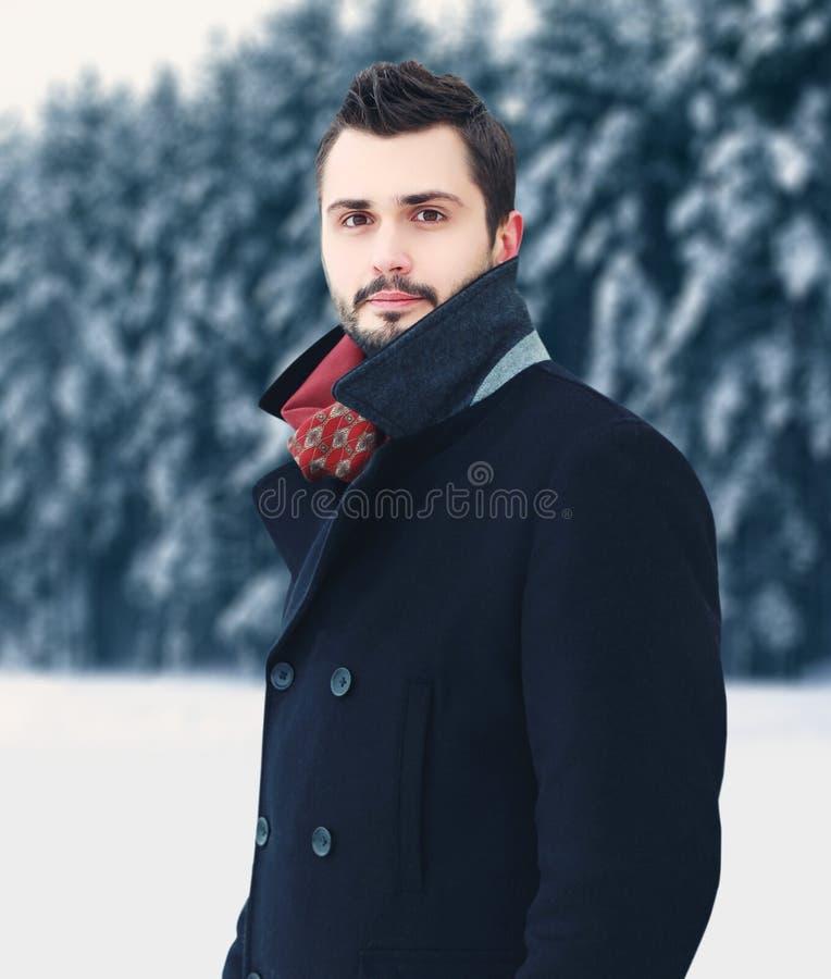 Forme a retrato el hombre barbudo elegante hermoso que lleva la capa negra en invierno sobre fondo nevoso del bosque de los árbol fotografía de archivo libre de regalías